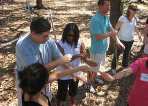Team Building Strings 1